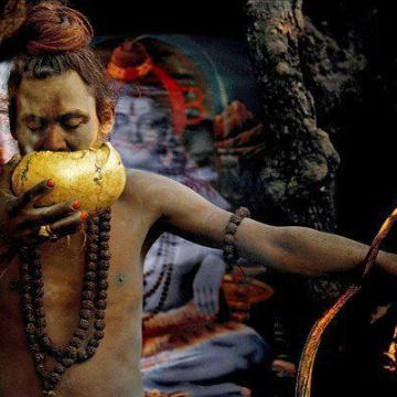 http://www.prasanayoga.com/about/about-yoga-education-through-imagery-yei/attachment/the-aghoris/